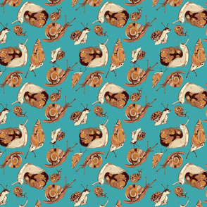 snail pattern-teal