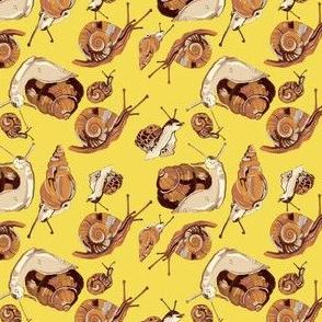 snail pattern-yellow 2