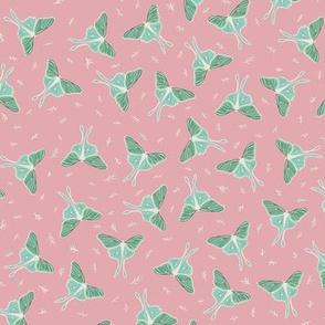 Luna Moths Pattern Pink and Green