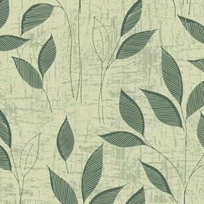 Leaves-green-nanditasingh
