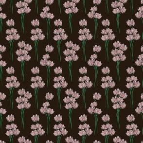 pink tulips on dark brown background