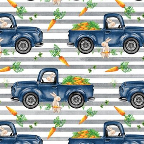 Charcoal Stripe 2021 Bunny Truck