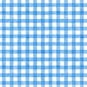 Spring Blue Watercolor Gingham