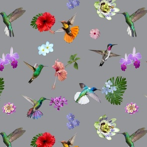 Hummingbirds and flowers 2021 - Ultimate grey