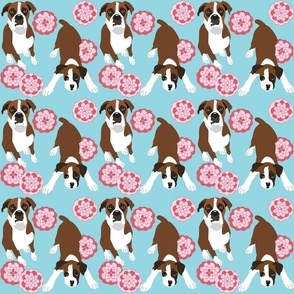 Boxer dog and flowers