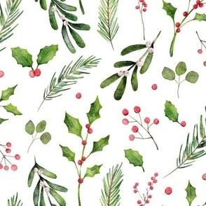watercolor_holly_berries_mistletoe