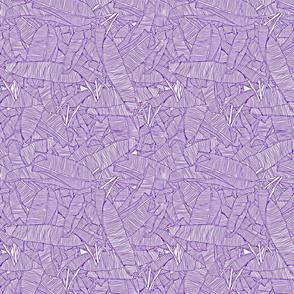 module_purple