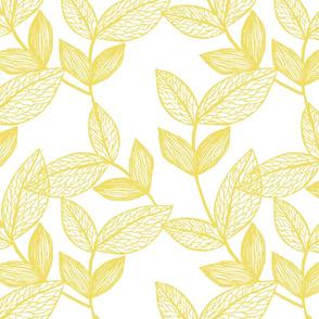 webbed leaves illuminating yellow