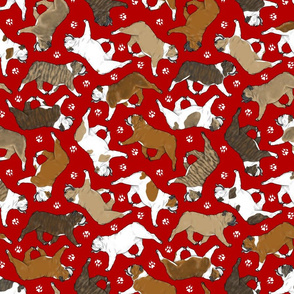 Trotting Bulldogs and paw prints - red