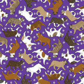 Trotting Bulldogs and paw prints - purple