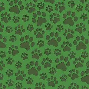 Cat paws on green medium