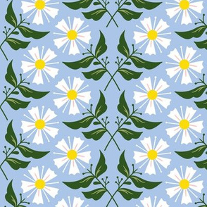 Bloomy summer