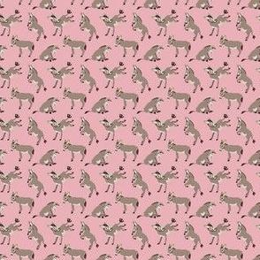 Haulin Ass (Pink) Micro