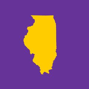 "Illinois silhouette in 13x18"" block, college yellow on purple"