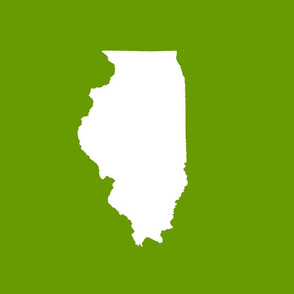 "Illinois silhouette in 13x18"" block, white on leaf green"