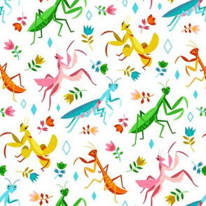 An Unordinary Array of Praying Mantises - On White (Large Scale)