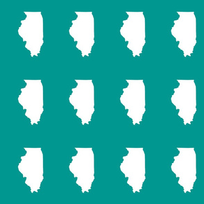 "Illinois silhouette in 4.5 x 6"" block, white on teal"