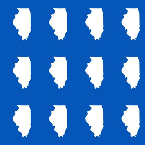 "Illinois silhouette in 4.5 x 6"" block, white on true blue"