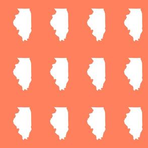 "Illinois silhouette in 4.5 x 6"" block, white on coral"