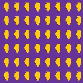 "Illinois silhouette in 2 x 3"" block, sports yellow on purple"