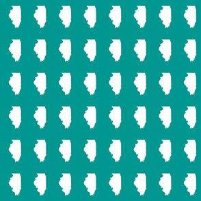"Illinois silhouette in 2 x 3"" block, white on teal"