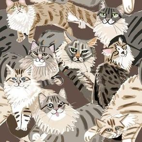 Cats Paradise Pattern Chocolate Big Scale