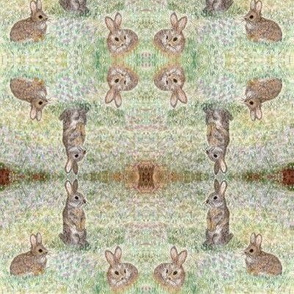 Bunnies in a meadow hand-drawn