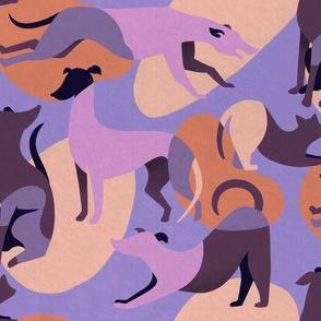 Mod Dogs in Purple and Orange - Macro Scale