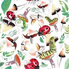 Catapillars Mushrooms Ladybugs 6x6