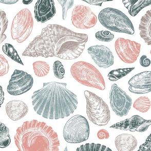 Seashell pattern pastel colors