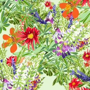 Bunch of Boschendal Flowers