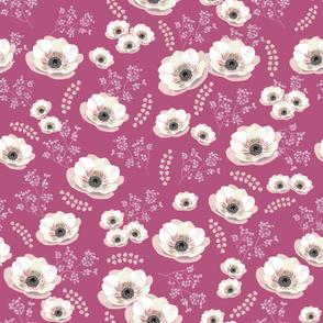 Pink anemones