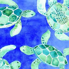 Green Sea Turtle - Hidden Honu Large Scale