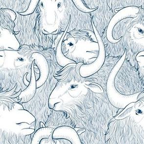 Fluffy Ox