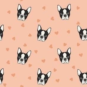 Pink French bulldog heads