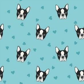 Blue French Bulldog heads