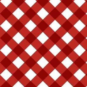 Gingham Red & White Bias