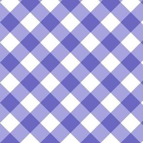 Gingham Purple Bias