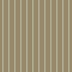 cc_5_stripeB