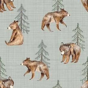 bear and tree sage