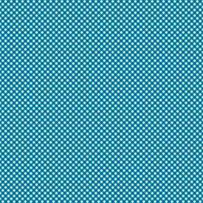 Gingham Blue & White Bias