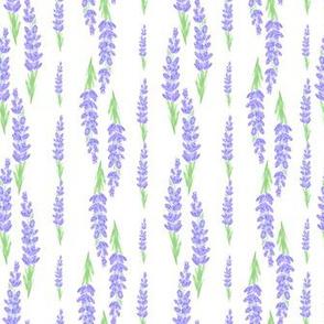 lavender stripes - white