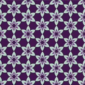 Purple Blooming Star Flowers