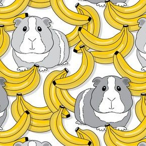 large guinea pigs and bananas