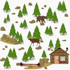 Mountain Cabin Life