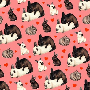Valentine Rabbits Multiply - Pink