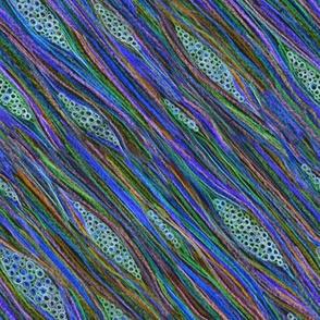 redwood cells