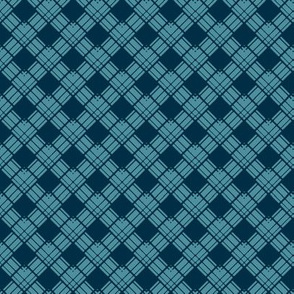 Medium - Woven Ribbon Trellis in Aquamarine and Charcoal