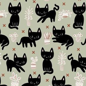 little black cat and plants