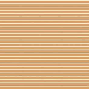 Stripes in Carrot-4.06x4.0